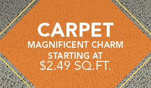 Magnificent Charm Carpet starting at $2.49 sq.ft. during the National Flooring Extravaganza Sale at BK Floors To Go in Evansville